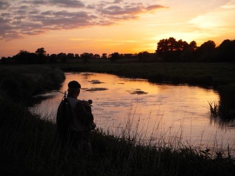 - Ved sommeråen spejdede Bøgedal efter fisk. I dag var det forgæves :-( (Arkivfoto, ULFISK.com)
