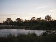 - Bornholmsk Stør-sø