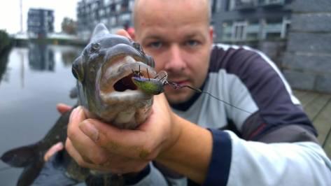 - Super billede med en fed vinkel på den forrygende fisk
