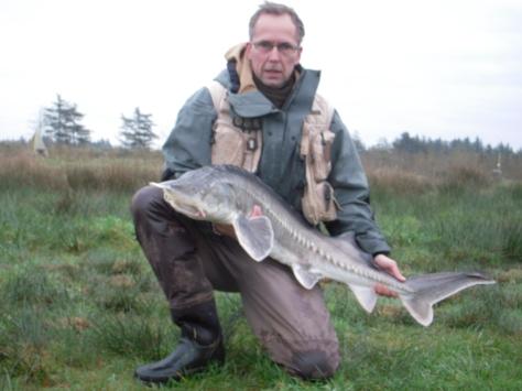 """- Yeps! - Så kom man da lige op på 12 kilo og 135 cm på """"stor-fisk-barometret"""".... Herligt!"""