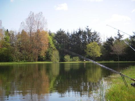 """- Skal man fiske stør eller ørreder i udsøgte omgivelser, er Roust """"the place to be""""!"""