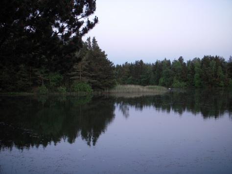 - En rigtig fræk karpe-lusker-sø :-)